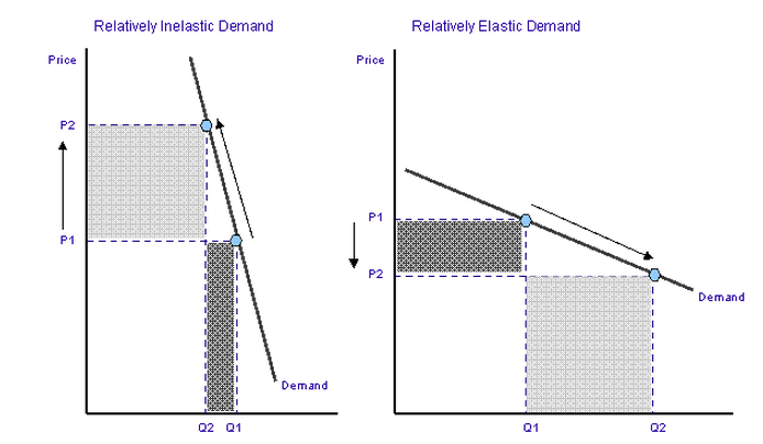 Qn Explain The Relevance Of Elasticity Price And Elasticity