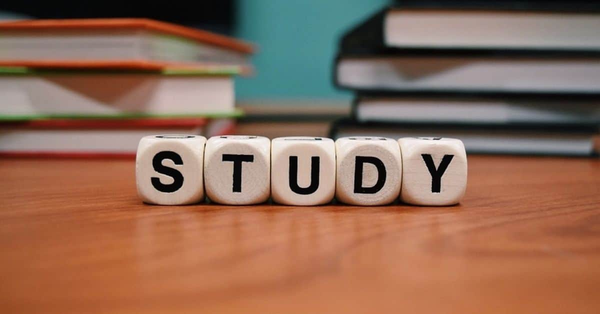The same IB subject can come in two levels: Standard Level (SL) and Higher Level (HL).